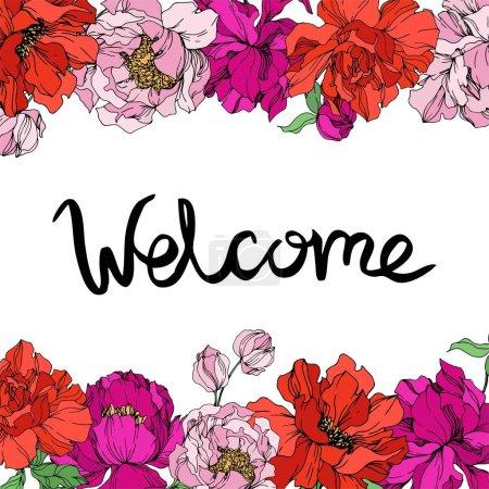 Ilustración de Flores botánicas florales de Peonía. Hoja de primavera silvestre wildflower aislado. Arte de tinta grabada en blanco y negro. Cuadrado de ornamento de borde de marco sobre fondo blanco. - Imagen libre de derechos