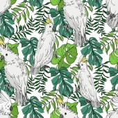 Vector Sky bird cockatoo in a wildlife Black and white engraved ink art Seamless background pattern