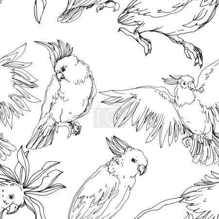 Illustration for Vector Sky bird cockatoo in a wildlife isolated. Wild freedom, bird with a flying wings. Black and white engraved ink art. Seamless background pattern. Fabric wallpaper print texture. - Royalty Free Image