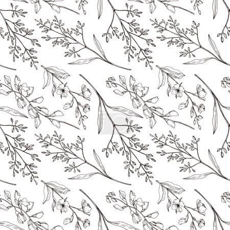 Illustration pour Vector Wildflower floral botanical flowers. Wild spring leaf wildflower isolated. Black and white engraved ink art. Seamless background pattern. Fabric wallpaper print texture. - image libre de droit