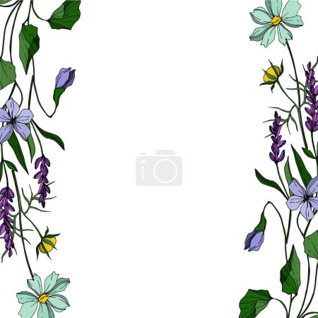 Illustration for Vector wildflower floral botanical flowers. Wild spring leaf wildflower isolated. Black and white engraved ink art. Frame border ornament square on white background. - Royalty Free Image