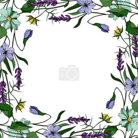 Illustration pour Vector wildflower floral botanical flowers, p. Isolement de fleurs sauvages printanières. Encre noire et blanche gravée. Cadre ornement de bordure carré sur fond blanc. - image libre de droit