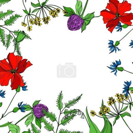Ilustración de Vector flores silvestres florales botánicas. Flora silvestre de manantial silvestre aislada. Arte de tinta grabada en blanco y negro. Cuadro ornamental de marcos fronterizos sobre fondo blanco. - Imagen libre de derechos