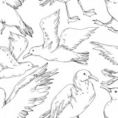 "Постер, картина, фотообои ""Vector Sky bird seagull isolated. Black and white engraved ink art. Seamless background pattern."""