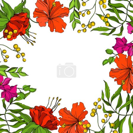 Illustration for Vector Tropical floral botanical flower. Exotic tropical hawaiian summer. Engraved ink art. Frame border ornament square on white background. - Royalty Free Image