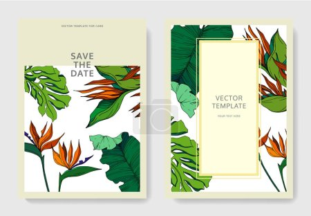 Illustration for Vector Tropical floral botanical flowers. Engraved ink art. Wedding background card floral decorative border. Thank you, rsvp, invitation elegant card illustration graphic set banner. - Royalty Free Image