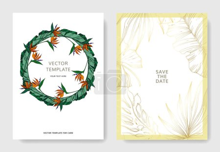 Illustration for Vector Tropical floral botanical flowers. Engraved ink art. Wedding background card floral decorative border. Thank you, rsvp, invitation elegant card illustration graphic set banner. - Royalty Free Image