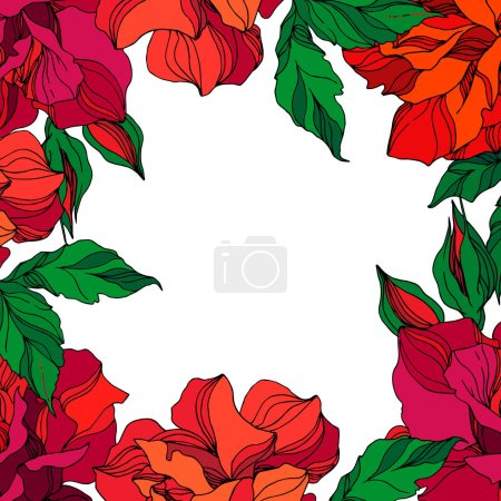 Illustration for Vector Rose floral botanical flower. Wild spring leaf wildflower isolated. Green ahd red engraved ink art. Frame border ornament square on white background. - Royalty Free Image