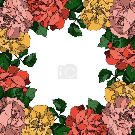 Illustration for Vector Roses floral botanical flowers. Wild spring leaf wildflower isolated. Black and white engraved ink art. Frame border ornament square on white background. - Royalty Free Image