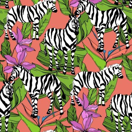 Illustration pour Vector Exotic zebra print animal sauvage isolé. Encre gravée en noir et blanc. Modèle de fond sans couture. Texture d'impression papier peint tissu . - image libre de droit
