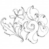 Vector Baroque monogram floral ornament Black and white engraved ink art Isolated ornaments illustration element