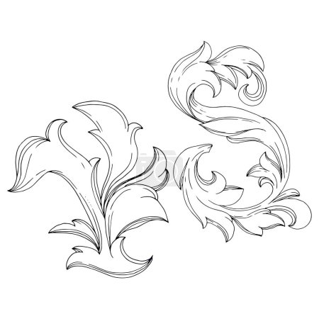 Illustration for Vector Golden monogram floral ornament. Baroque design isolated elements. Black and white engraved ink art. Isolated monograms illustration element. - Royalty Free Image