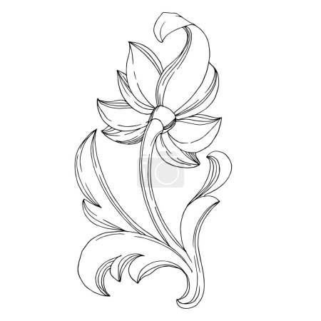 Illustration for Vector Golden monogram floral ornament. Baroque design elements. Isolated ornament illustration element on white background. Black and white engraved ink art. - Royalty Free Image