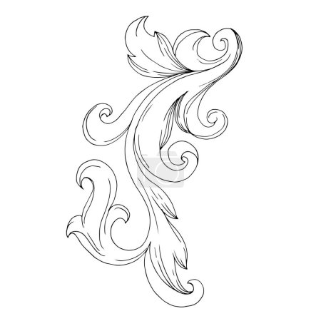 Illustration for Vector Baroque Monogram floral ornament. Vintage design elements. Black and white engraved ink art. Isolated ornament illustration element on white background. - Royalty Free Image