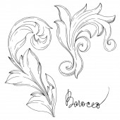 Vector Baroque Monogram floral ornament Black and white engraved ink art Isolated ornament illustration element