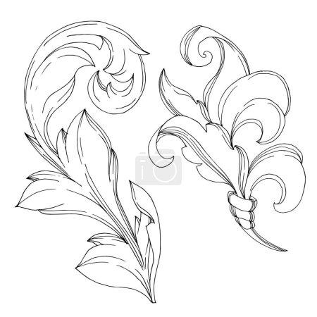 Illustration for Vector Baroque Monogram floral ornament. Vintage design elements. Black and white engraved ink art. Isolated ornament illustration element on white background. - Royalty Free Image