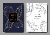 Vector Summer beach seashell tropical elements Engraved ink art