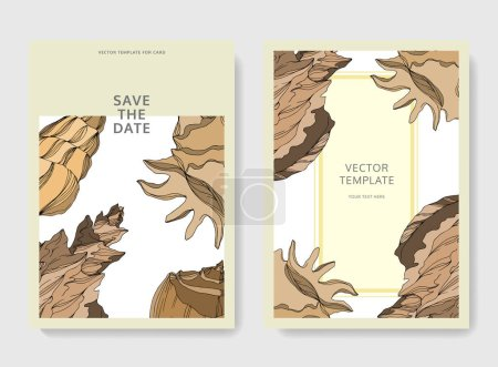 Illustration for Vector Summer beach seashell tropical elements. Beige brown engraved ink art. Wedding background card decorative border. Thank you, rsvp, invitation elegant card illustration graphic set banner. - Royalty Free Image