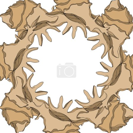 Illustration for Vector Summer beach seashell tropical elements. Brown beige engraved ink art. Frame border ornament square on white background. - Royalty Free Image