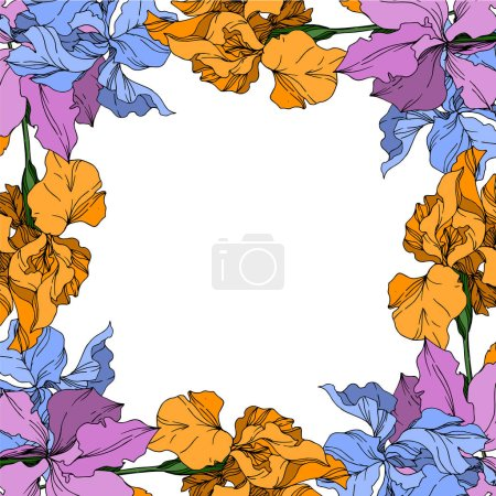 Illustration for Vector Iris floral botanical flowers. Wild spring leaf wildflower isolated. Black and white engraved ink art. Frame border ornament square on white background. - Royalty Free Image