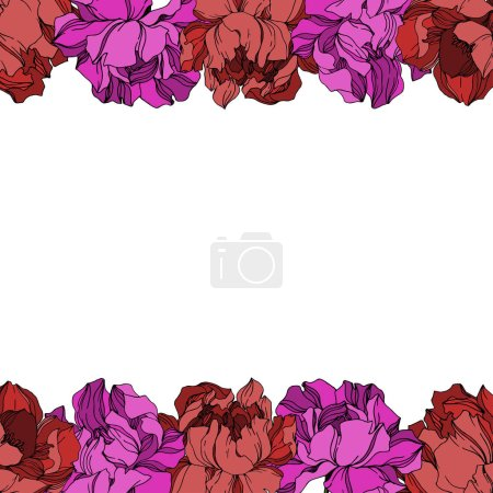 Illustration for Vector Peony floral botanical flowers. Wild spring leaf wildflower isolated. Black and white engraved ink art. Frame border ornament square on white background. - Royalty Free Image