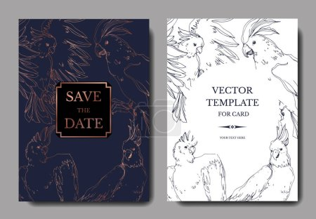 Illustration for Vector Sky bird cockatoo in a wildlife. Black and white engraved ink art. Wedding background card decorative border. Thank you, rsvp, invitation elegant card illustration graphic set banner. - Royalty Free Image