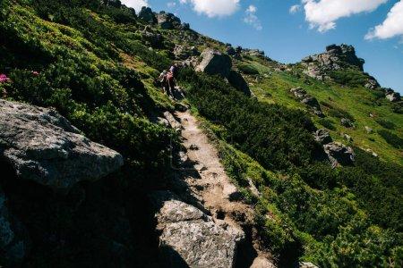 Photo pour Randonnée au mont Popivan, Yaremche, Ukraine - image libre de droit