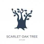 scarlet oak tree icon vector on white background scarlet oak tree trendy filled icons from Nature collection