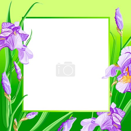 Photo for Frame of Irises flowers, color sketch. Placard, poster, flyer, banner invitation card. - Royalty Free Image