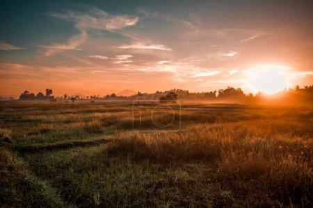 Photo pour Beau lever de soleil sur champ d'été brumeux - image libre de droit
