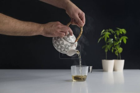 White table with Marijuana plant in pottery. Hand ...