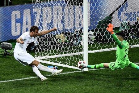 Goalkeeper Danijel Subasic of Croatia