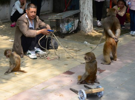 A man directs his monkey to perform during a stree...