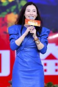Hong Kong-Australian actress and cantopop singer Cecilia Cheung attends a press conference for new movie