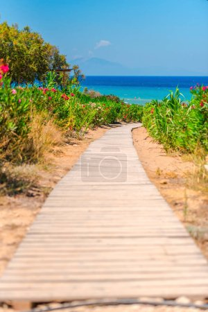Photo for Tropical beach with sea view - Royalty Free Image