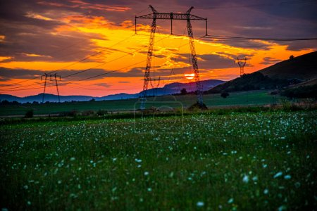 Photo for Sunset over the field - Royalty Free Image