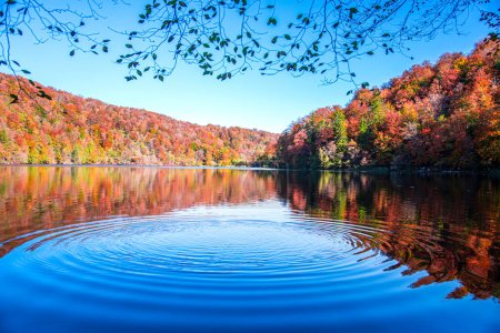 Photo for Beautiful autumn landscape with reflection in water - Royalty Free Image