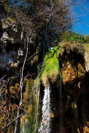 Photo for Mountain stream in the mountains - Royalty Free Image
