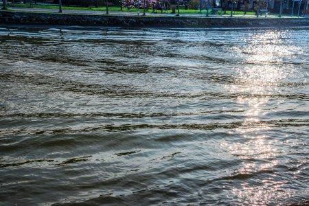 Photo pour Rivière d'eau le matin - image libre de droit