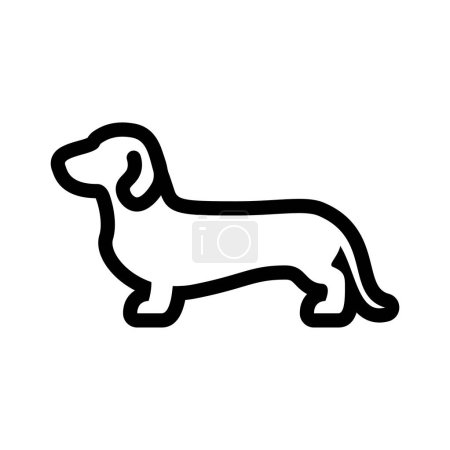 Vector Daschund Dog Icon Isolated On White Backgro...