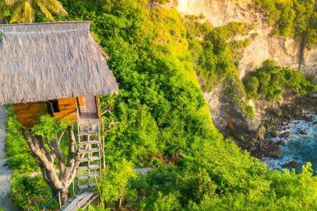 Beautiful scenery of Tree House
