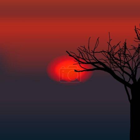 vecteur nature soirée arbre