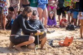 FERNANDO DE NORONHA - Oct 4, 2017: Scientific Capture of Sea Turtles, measurement and data collection by Tamar Project (Projeto Tamar) at Praia do Boldro Beach - Fernando de Noronha, Pernambuco, Brazil