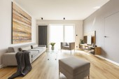 Modern apartment interior with a grey sofa, footstool and armchair, wooden floor, tv and colorful graphic