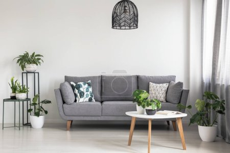 Photo for Real photo of a simple living room interior with a grey sofa, plants and coffee table - Royalty Free Image