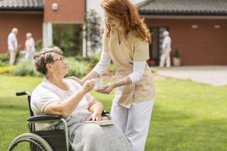 Infirmière amicale donnant du thé à une femme âgée handicapée en fauteuil roulant dans le jardin