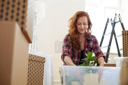 Low angle on smiling woman packing a plant into a box during relocation to a new flat