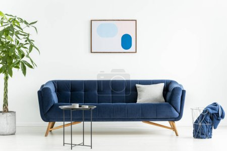 Photo for Palm next to blue sofa with pillow in white living room interior with poster and black table. Real photo - Royalty Free Image