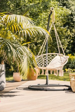 Natural sunny terrace with a string hammock hanging from a metal stand next to a palm tree in a pot. An empty space on the floor to place something.