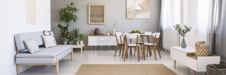Photo for Panorama of a bright, spacious living and dining room interior with white, wooden furniture, gray sofa and plants - Royalty Free Image